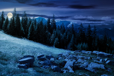 alpine summer landscape composite at night in full moon light. rock formation near the spruce forest on a grassy hill.  mountain with snowy top in the distance. springtime meets summer concept