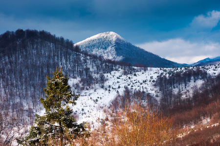 mountains of  Uzhanian National Nature Park in winter. picturesque nature scenery Stock Photo