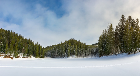 panorama of beautiful winter scenery in mountains. frozen lake cowered with snow. spruce trees on the shore. wonderful sunny weather
