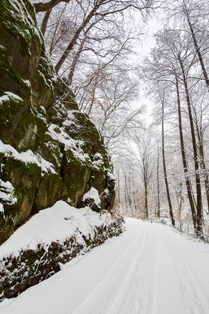 road through gorge and forest in winter. beautiful scenery with lots of snow Stock Photo
