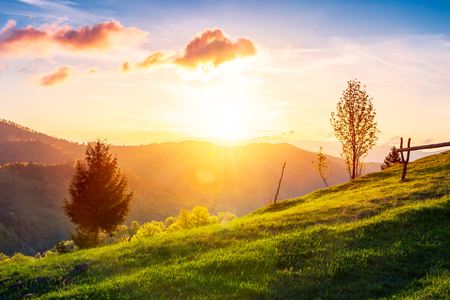 green wonderland at purple sunset. gorgeous countryside in mountains under the beautiful sky. wooden fence along the path uphill the grassy meadow. wonderful springtime season Stock Photo