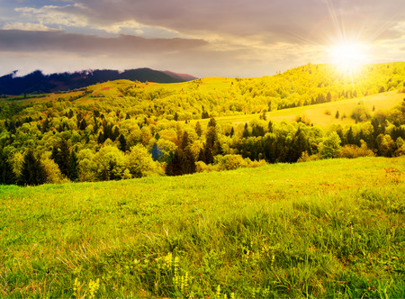 beautiful mountainous countryside in springtime at sunset. grassy meadows and forested hill. freshness of nature concept Stock Photo