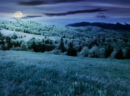 beautiful mountainous countryside in springtime at night. grassy meadows and forested hill. freshness of nature concept