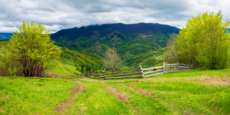 path through agricultural area in mountains. wooden fence along the road down the hill. trees on hills in fresh green foliage. beautiful panoramic landscape in spring Stock Photo