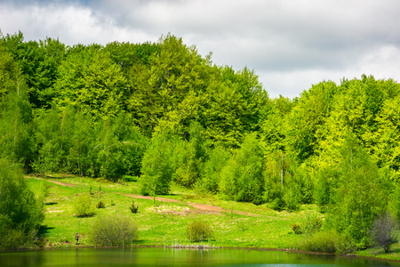 forested shore of the lake in springtime. lovely nature scenery Stock Photo
