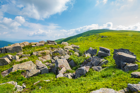 grassy slope with huge rocks. wonderful summer landscape in mountains. grassy meadow with huge boulders. beautiful sunny landscape. mountains in summertime Stock Photo - 113787367