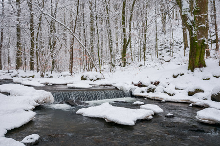 small cascade on the forest creek in winter. beautiful nature scenery 免版税图像