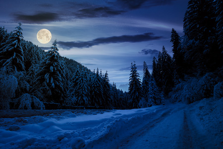 road in snow through winter forest at night in full moon light. beautiful scenery in mountains. spruce trees in snow