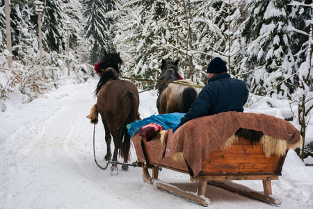 winter ride in horse sleigh. view from the back Stock Photo