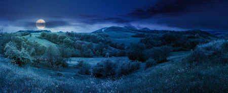 beautiful countryside panorama in springtime at night in full moon light. grassy hills and meadows. trees with green foliage on hillsides. mountain top in the distance. wonderful nature scenery