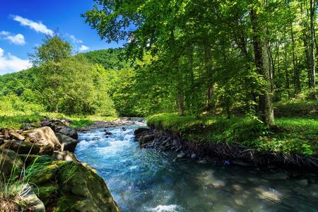 piękny letni krajobraz nad małą rzeką leśną. szalejący przepływ wody wśród skał na brzegu. świeże zielone liście na drzewach. w oddali zalesione wzgórze. jasne i ciepłe popołudnie
