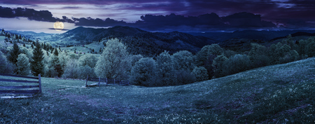 panorama of mountainous countryside in springtime at night in full moon light. beautiful highland landscape. wooden fence on the grassy field. row of trees along the hill. rural area in the distance