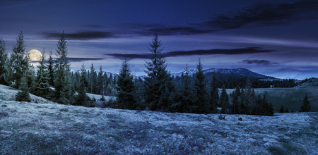 panorama of beautiful countryside in mountains at night in full moon light. spruce trees on the meadow. top of the snow covered ridge in the distance. wonderful nature scenery Stock Photo