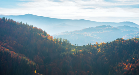 beautiful autumn landscape in mountains. blue hazy afternoon in countryside. rolling hills with colorful mixed forest. wonderful nature of romania Stock Photo