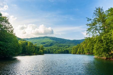 lake among primeval beech forest. morske oko popular destination of vihorlat mountains. summer adventure concept. discover landscape of slovakia