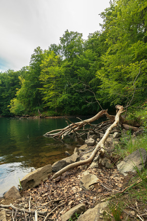 lake among primeval beech forest. morske oko popular destination of vihorlat mountains, slovakia. protected environment concept