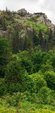 huge cliff in the forest. beautiful nature scenery in summer. overcast sky