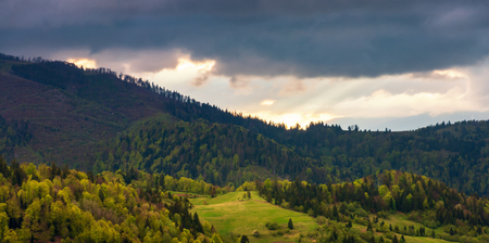 panorama of a wonderful countryside in mountains. meadow among forested rolling hills. beautiful landscape in spring at sunset. overcast sky