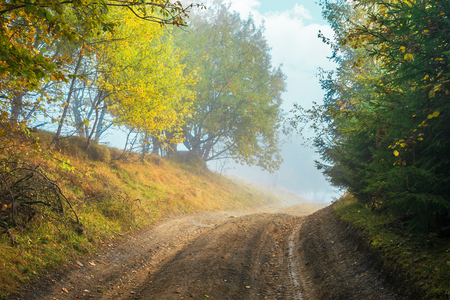 road uphill through forest in autumn fog. colorful trees on the side way. dramatic nature scenery Stock Photo