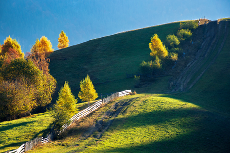 beautiful autumn countryside in mountains. wooden fence along the road uphill. drop of light on the green grassy meadow. carpathian rural area. beautiful sunny forenoon