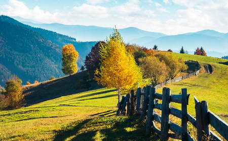 beautiful autumn countryside in mountains. wooden fence along the road through grassy hills. carpathian rural area. beautiful sunny weather Stock Photo