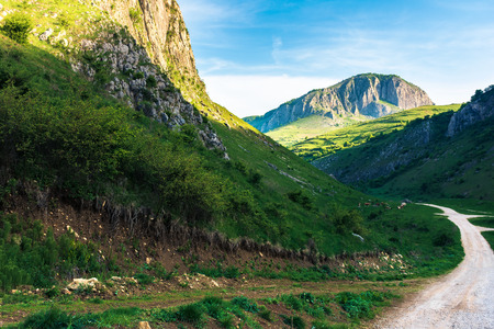amazing countryside in romania mountains. huge cliffs above grassy meadows. cattle of cows grazing in  the distance. road in to the gorge. beautiful landscape in springtime at sunrise Stock Photo