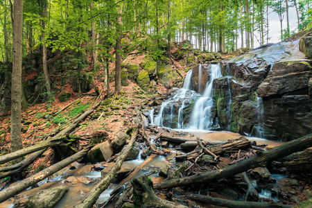 waterfall in the forest. beautiful spring scenery. water comes out of rocky cliff. fallen trees in the stream. fallen foliage among trees. bright and vivid nature background