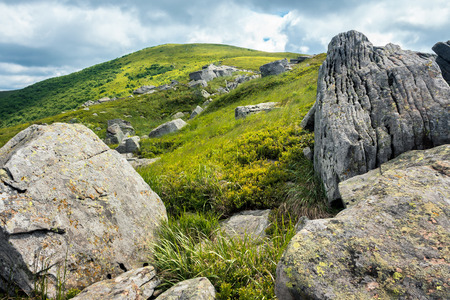 rocks among the grass in mountains. view in to the distant hill through boulders. beautiful landscape in summer afternoon. overcast sky Stock Photo