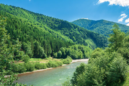 forest river in mountains. forested hill and shore with pebble beach. beautiful summer landscape at sunny high noon. fluffy cloud on the blue sky