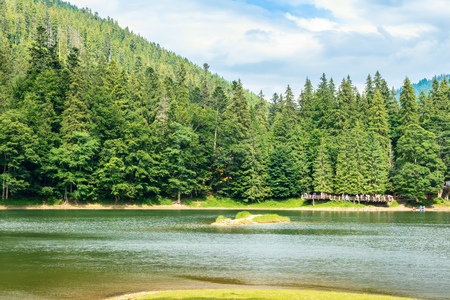 beautiful summer scenery of the synevyr lake. pier among the coniferous forest on the shore. popular travel destination of carpathian mountains. sunny weather with cloudy sky Stock Photo