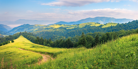 panorama of a summer countryside landscape in mountains. winding path down the grassy slope among conifer trees. rural fields on a distant hill. beautiful sunny weather at sunrise Stock Photo