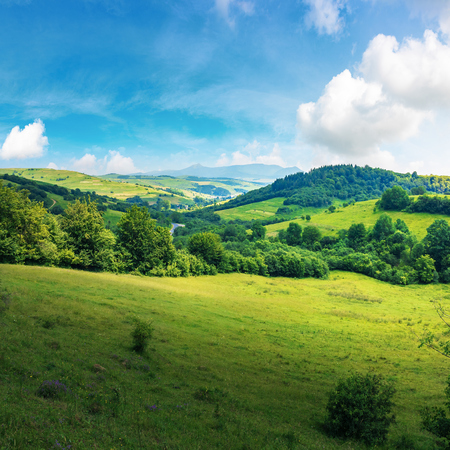 beautiful countryside summer landscape. forested rolling hill with grassy meadow. village in the valley. blue sky with fluffy clouds. mountain ridge in the distance. sunny weather Stock Photo