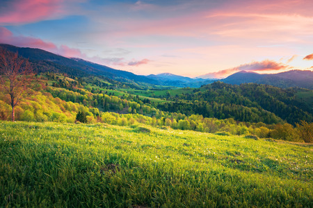 mountainous springtime countryside at sunset. wonderful landscape with grassy meadow and forested hills. sky with red clouds Stock Photo