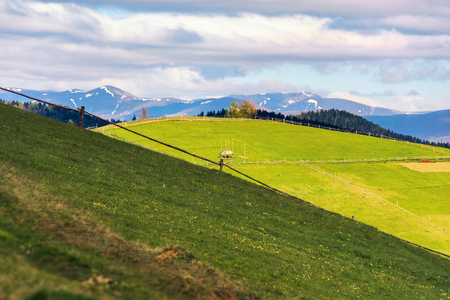 rural field on grassy hill in mountains. distant ridge with snowy tops. beautiful countryside scenery in springtime. wonderful sunny weather with cloudy sky Stock Photo - 117778390