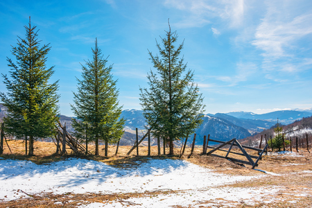 sunny springtime weather in mountain. beautiful carpathian rural landscape. spruce trees near the wooden fence on the meadow with  melting snow on weathered grass. village down in the valley Stock Photo