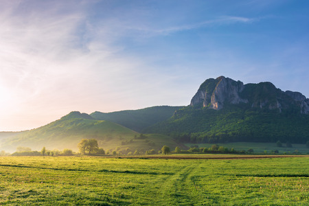 springtime countryside of romania at sunrise. beautiful scenery with trees on a grassy field. huge rocky cliff above the forested hill in the distance. haze among the trees. sunny weather. blue sky Stock Photo