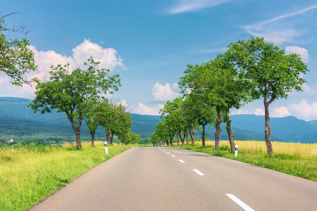 countryside road in to the mountains. trees and rural fields on both sides along the straight way. wonderful sunny weather with fluffy clouds on a blue summer sky Stock Photo