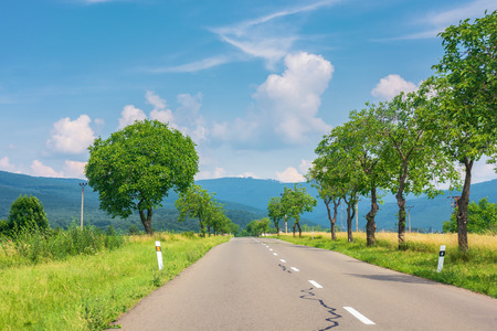 countryside road in to the mountains. trees and rural fields on both sides along the way. wonderful sunny weather with fluffy clouds on a blue summer sky. travel by car concept, explore slovakia Stock Photo