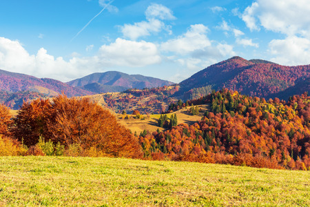 autumn countryside in mountains. grassy meadows and forested hills. wonderful nature scenery in the afternoon. vivid autumn colors and bright blue sky with fluffy clouds Stock Photo