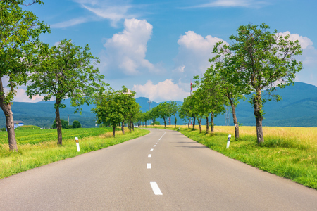 countryside road in to the mountains. trees and rural fields on both sides along the winding way. car ahead in the distance. wonderful sunny weather with fluffy clouds on a blue summer sky
