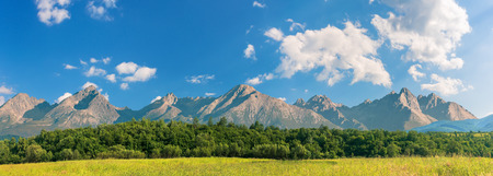 beautiful sunny day in mountainous countryside. row of trees behind the field. High Tatra mountain ridge in the distance. composite imagery