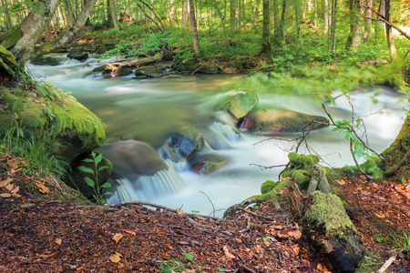 cascade on the forest river in springtime. beautiful nature scenery. view from the edge of a bank. long exposure, sunny day