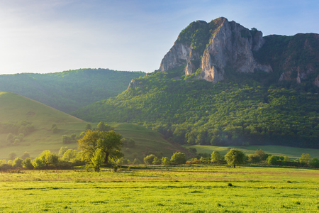 springtime countryside of romania at sunrise. beautiful scenery with trees on a grassy meadow. huge rocky cliff above the forested hill in the distance. sunny weather