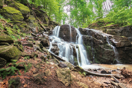 waterfall on the river among forest. powerful two cascaded water flow. spring freshness in the beech forest. beautiful nature scenery