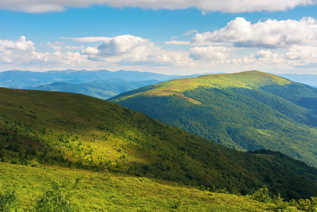 beautiful mountain landscape in summer afternoon. green alpine meadows and forested hills. ridge in the distance. beautiful nature scenery with fluffy clouds on the blue evening sky