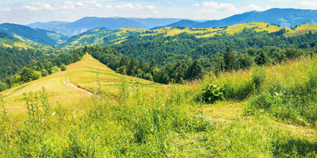 mountainous countryside on a hot summer afternoon. panoramic landscape, path through grassy slope. meadows on the distant rolling hills. village in the far away valley. sunny weather