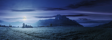 panorama of romania countryside at night in full moon light. beautiful scenery with trees in haze on a grassy field. huge rocky cliff above the forested hill in the distance. discover romania Stock Photo