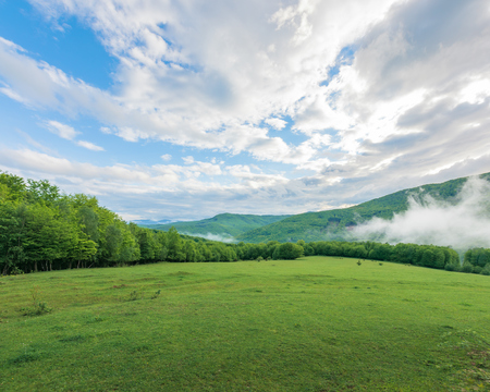 summer countryside in mountains. fog rising behind the grassy meadow among the forest. cloudy morning sky. ridge in the distance. Stock Photo - 119513230