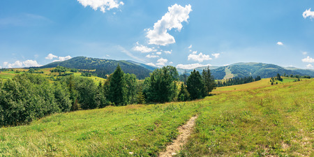 panorama of beautiful countryside in mountains. trees on a grassy meadow on a sunny july day. ridge in the distance Stock Photo