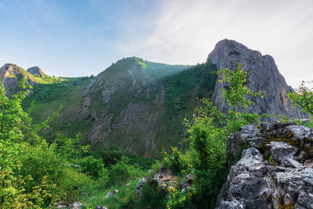 morning in the Valisoara gorge, romania. wonderful forenoon in the canyon. on the edge of a slope